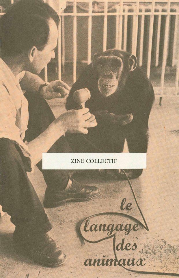 Zine Collectif Festival Diapason